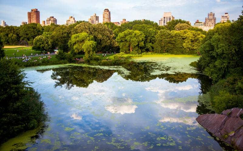 gratis parken new york