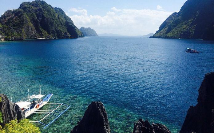 zwemmen met haaien in de filipijnen