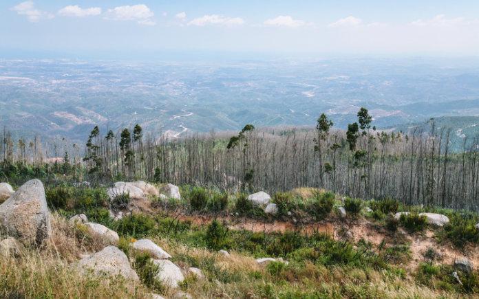 Serra de Monchique bezienswaardigheden Portugal