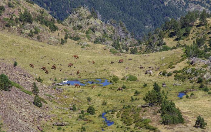 Coma Pedrosa paarden bezienswaardigheden Andorra