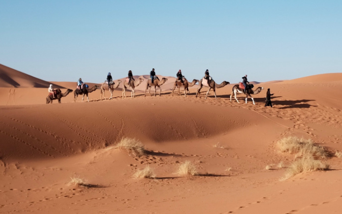 kamelenrit hurghada egypte